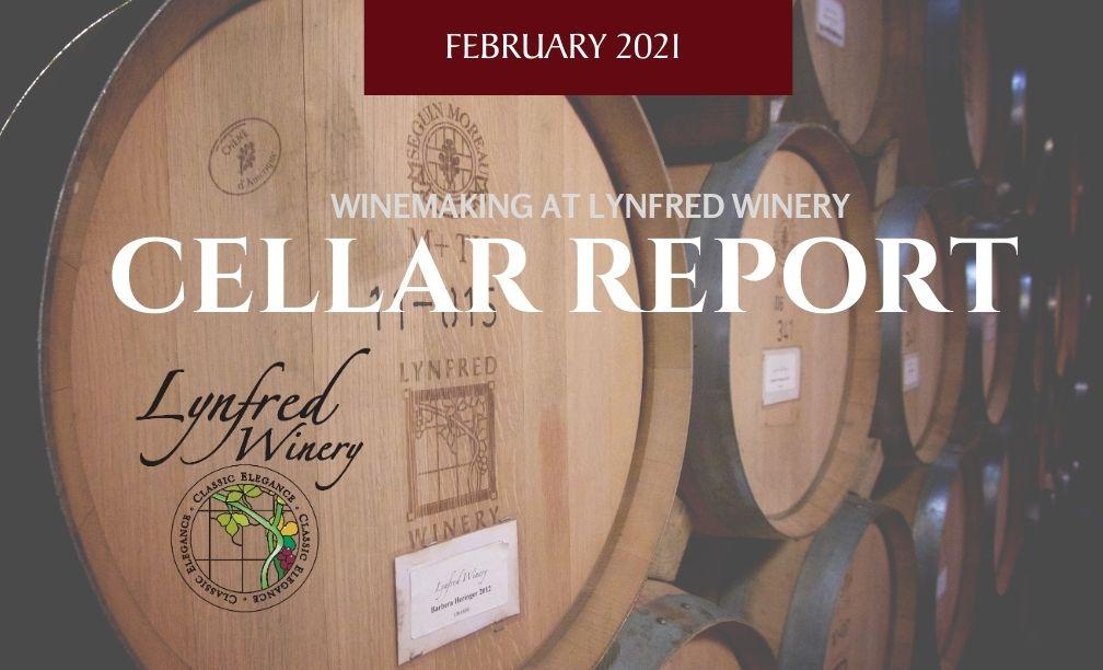 Cellar Report